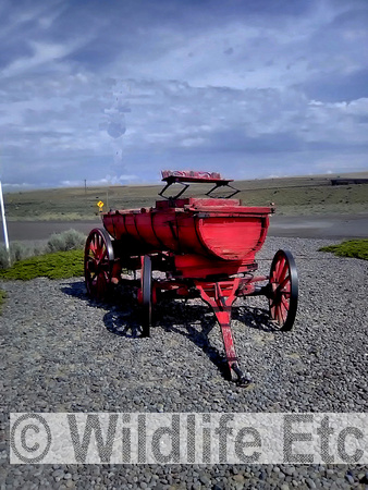 OLD  RED  WAGON   00