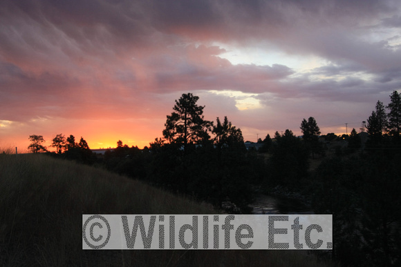 SPOKANE  SUNRISE  00